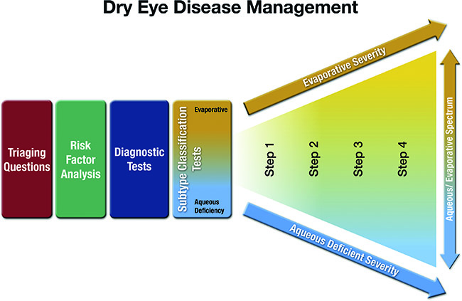 dba6e88435345 Fig. 1 Diagrammatic representation of the process associated with the  management of DED.